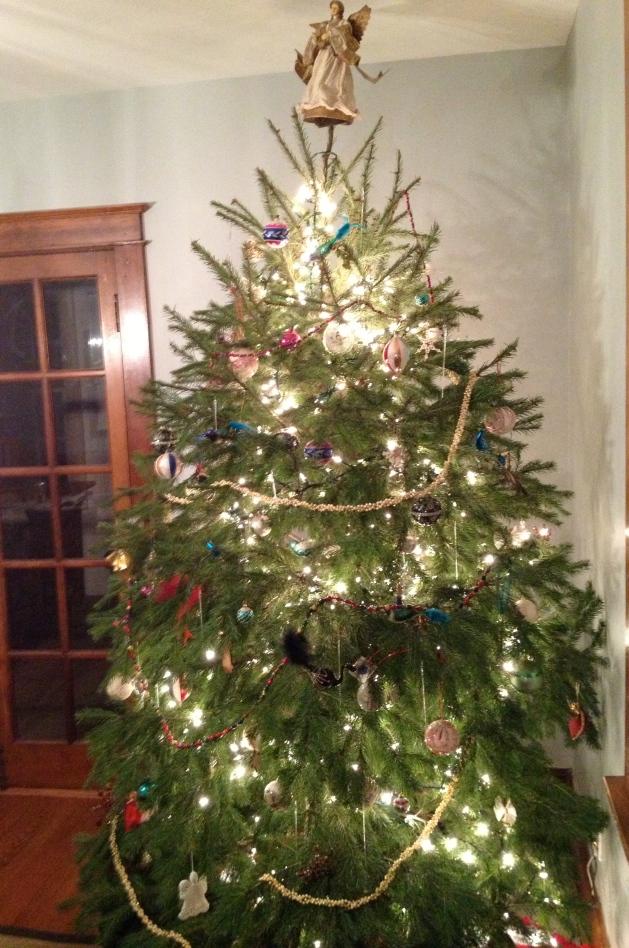 A traditional Christmas tree.
