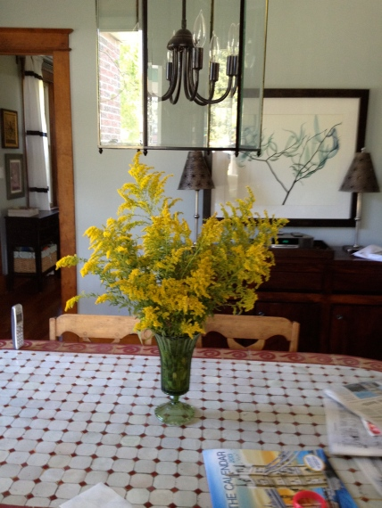 Goldenrod from the garden.