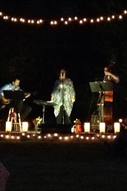 Diane Daly's Jazz Trio.
