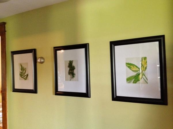 Benjamin Moore's Green Hydrangea.
